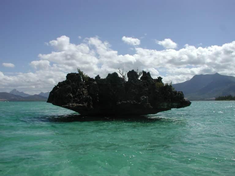 Une roche en forme de bénitier sort de l'eau à l'île Maurice.